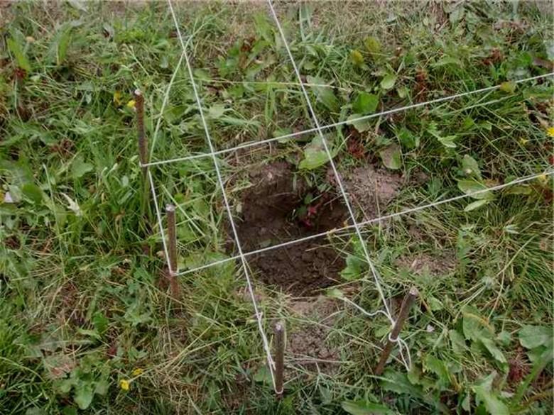 ямы под фундамент